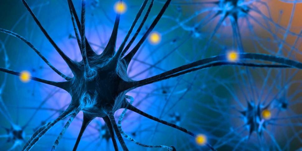 Ученые объяснили связь между низким уровнем серотонина и деменцией