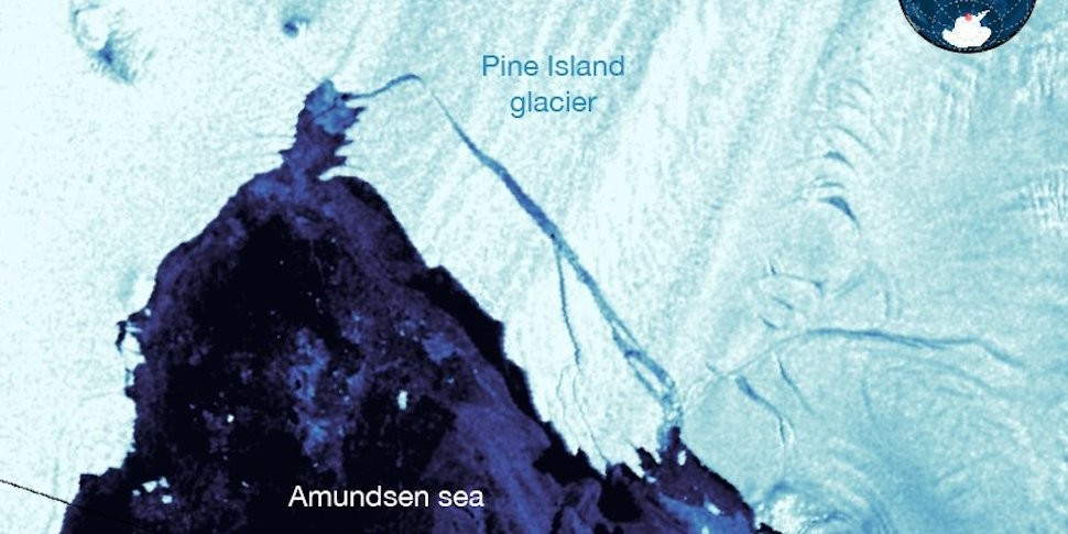 Еще один гигантский айсберг откололся от Антарктиды