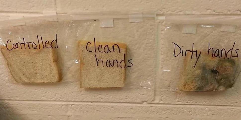 Почему надо мыть руки? Доходчивое объяснение учительницы из США