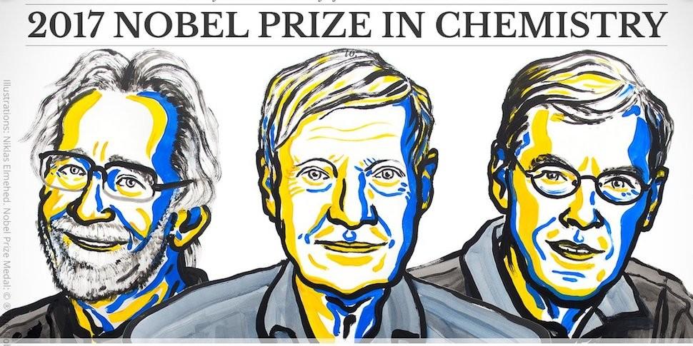Нобелевская премия по химии достанется исследователям криоэлектронной микроскопии