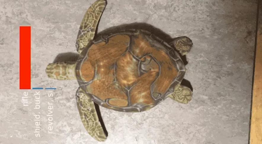 Google AI спутал черепаху с винтовкой. Почему это опасно?