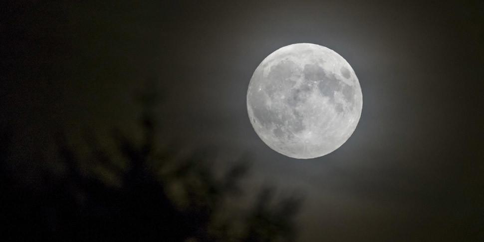 В России усомнились в способности США отправить на Луну астронавтов