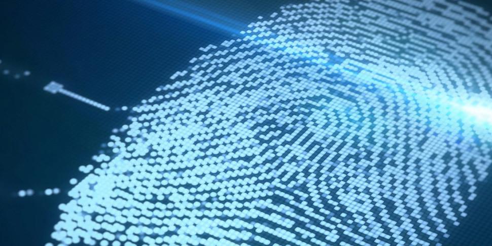 Synaptics начала массовое производство встроенного в экран сканер отпечатков пальцев